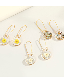 Fashion Round White Flowers Round Dried Flower Resin Transparent Glass Ball Earrings