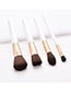 Fashion White + Gold 4 Sticks With Wooden Handle Brush