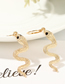 Fashion Gold Metal Snake Earring