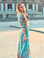 Fashion Sapphire Blue Flower Pattern Decorated Color Matching Long Slit Dress