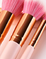 Fashion Pink+white Sector Shape Decorated Makeup Brush (24 Pcs)