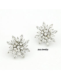 Rasta Silver Color Snowflake Shape Decorated With Cz Diamond Alloy Stud Earrings