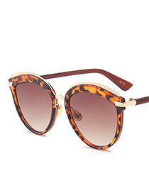 Vintage Coffee Leopard Decorated Sunglasses