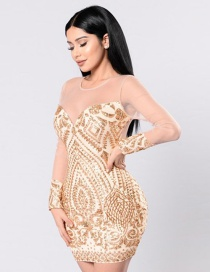 Trendy Gold Color Sequins Decorated Long Sleeves Perspective Dress