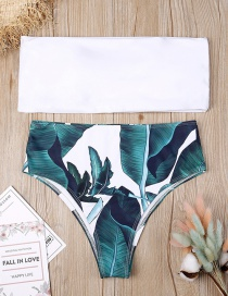 Sexy White+green Leaf Pattern Decorated Simple Swimwear(2pcs)