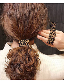 Fashion Leopard Striped Knotted Hairline