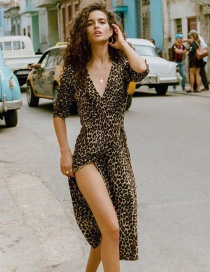 Fashion Brown Leopard Pattern Decorated V Neckline Dress