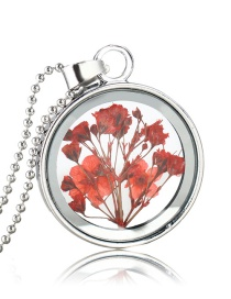 Fashion White K+ Red Background Large Flower + Red Flower Natural Forget-me-not Dried Flower Necklace