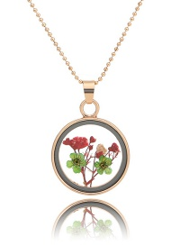 Fashion Gold + Red + Malachite Green Natural Forget-me-not Dried Flower Necklace