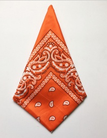 Fashion Orange Cashew Flower Print Scarf Scarf