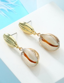 Fashion Gold Natural Shell Earrings