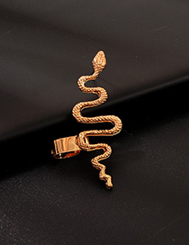 Fashion Gold Metal Snake Earrings
