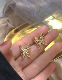 Fashion Golden Butterfly Rhinestone Hollow Alloy Earrings