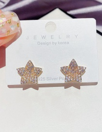 Fashion Golden Full Diamond Micro-inlaid Zircon Three-dimensional Flower Earrings