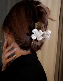 Fashion Champagne Pearl Flower Geometric Square Diamond Hair Scratch