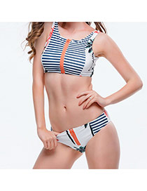 Sexy Multicolor Palm Trees&stripe Pattern Decorated Zipper Design  Polyester Sexy Bikini