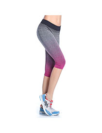 Fashion Plum Red Gradient Decorated Simple Tight Sport Pants