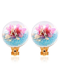 Sweet Blue Flower &round Shape Decorated Simple Earrings
